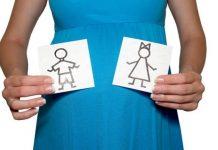 Çin təqvimi ilə uşaq cinsinin hesablanması